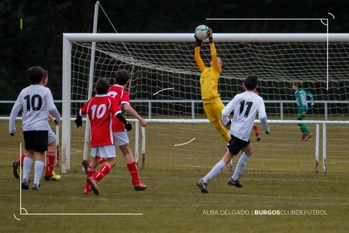 Nueve victorias para los equipos de base del Burgos
