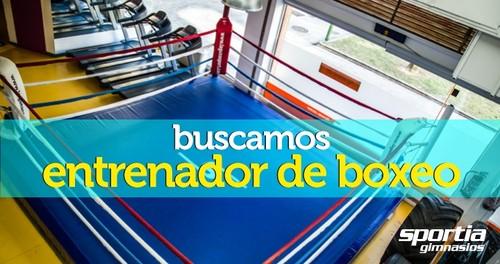 Entrenador de Boxeo